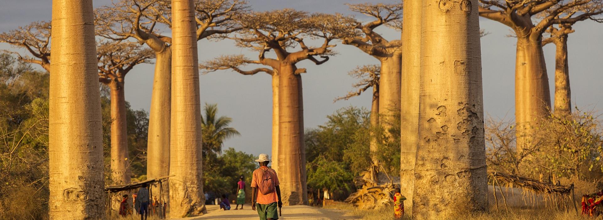Pasipaoro Malagasy